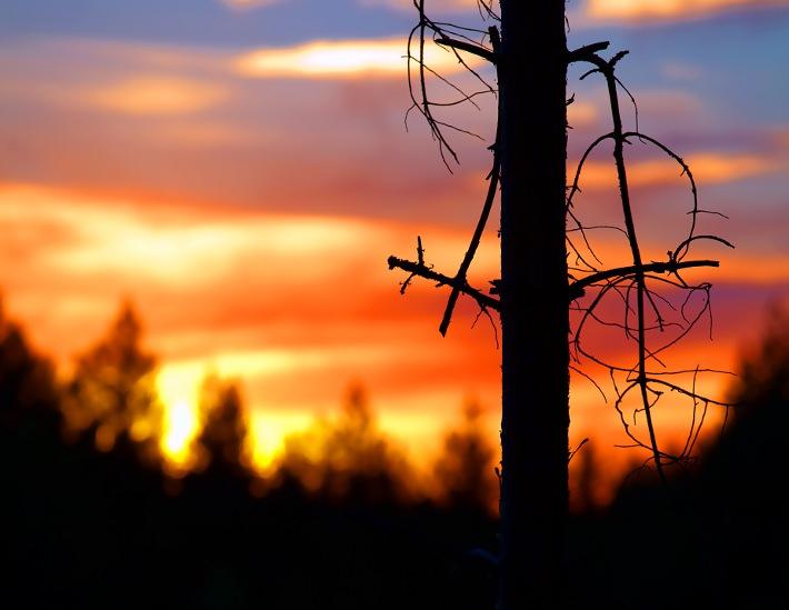 sunset410