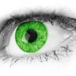 eyes517